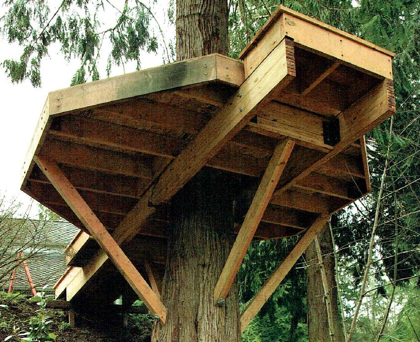 PETE NELSON TREEHOUSE MASTERS on amazing tree houses, exotic tree houses, luxury tree houses, extremely cool tree houses, easy to make tree houses, creative tree houses, canvas tree houses, lowe's tree houses, extreme tree houses, primland resort tree houses, adult tree houses, large tree houses, elaborate tree houses, great tree houses, pete's tree houses, best tree houses, tree masters tree houses, inexpensive tree houses, modern tree houses,